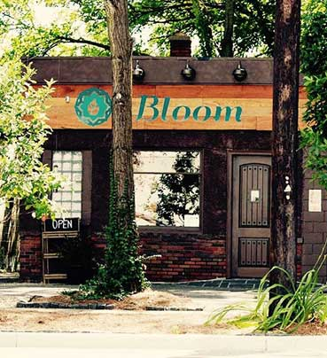 Bloom | Ann Arbor Dispensary | Medical Marijuana | Medical