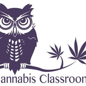 cannabis_classroom